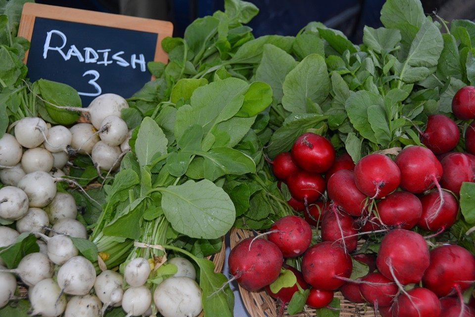 Who's on Deck at the 21st Annual Carmel Farmers Market